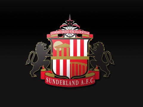 The Advertiser Series: Sunderland 2014-15 fixtures