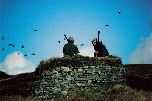 The Advertiser Series: Shooters at the Weardale Estate where a moorland conservation project has won an award.