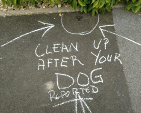 The Advertiser Series: Another dog fouling campaign