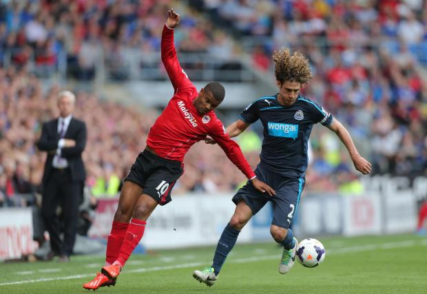 The Advertiser Series: SUMMER EXIT? Newcastle skipper Fabricio Coloccini