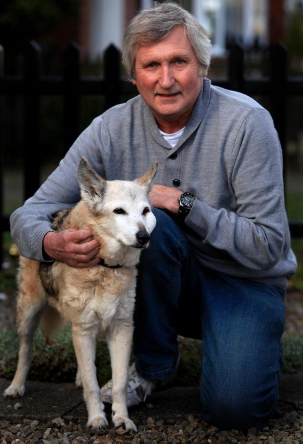 The Advertiser Series: LONG LIFE: Shepherd-Whippet cross Sindy, with owner Dave Spence