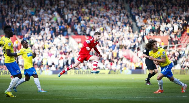 The Advertiser Series: SAINTS ROMP: Fabricio Coloccini tries to block as Adam Lallana lets fly to score the third of Southampton's four goals at St Mary's