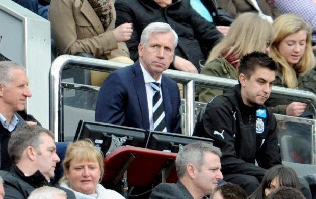 The Advertiser Series: FACE IN THE CROWD: Newcastle United manager Alan Pardew appears displeased as he watches his side lose 4-0 for the second game in a row