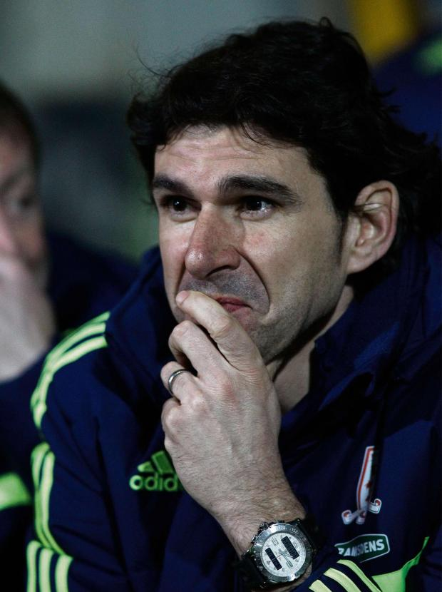 The Advertiser Series: Pondering: Aitor Karanka is thinking of new signings