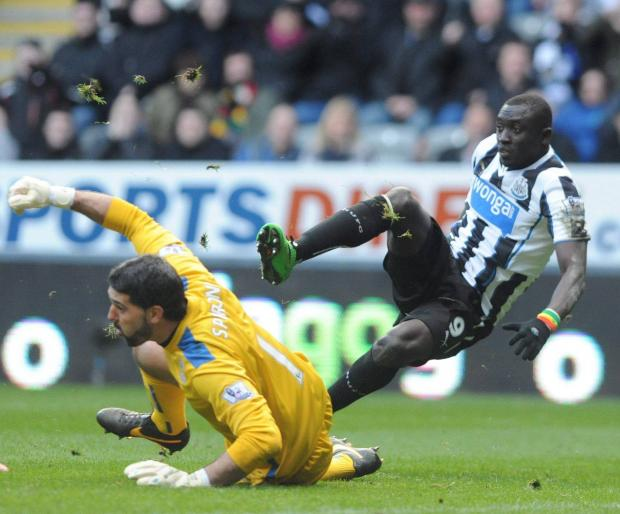 The Advertiser Series: On his own? Papiss Cisse is Newcastle's only first team senior striker as things stand