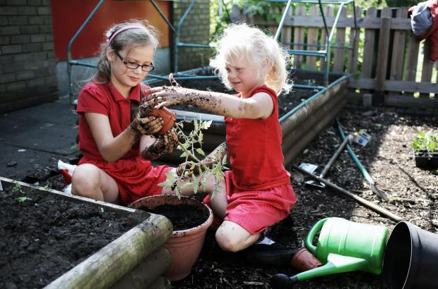 The Advertiser Series: GREEN FINGERS: Chloe Heseltine and Amelia Coverdale planting tomatoes at the Red Hall Junior School gardening club. The after-school club will soon benefit from a plastic bottle greenhouse. PICTURE: Stuart Boulton