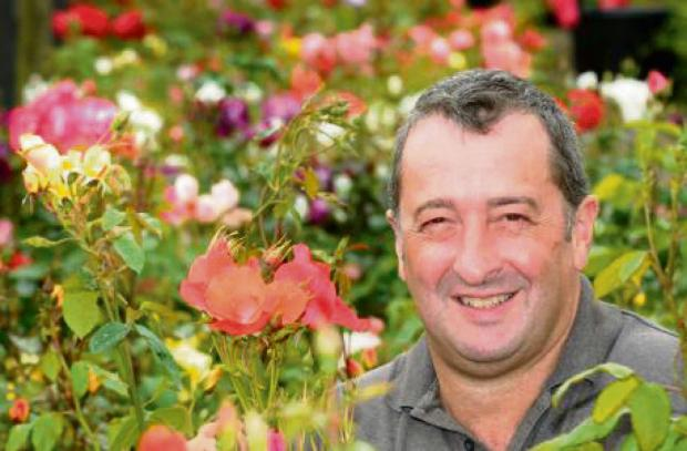 The Advertiser Series: R$OSE DAYS: Ian Roger, of RV Roger, prepares for Ryedale Rose Festival in Pickering on Saturday and Sunday.