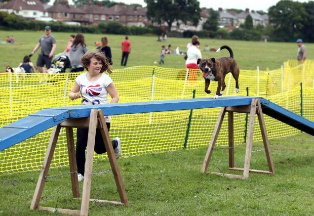 The Advertiser Series: GOOD DOG: Visitors have a go on the agility course at the Darlington Dogs Trust fun day in South Park, Darlington   Picture: CHRIS BOOTH