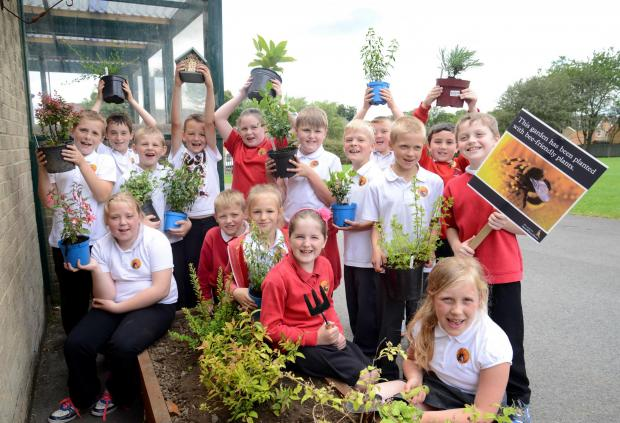 The Advertiser Series: BUZZY BEES: CHildren from the Grove Primary School with some of the bee-
