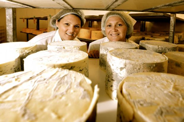 The Advertiser Series: SAY CHEESE: Sisters Kate and Caroline Bell in the Shepherd's Purse dairy.
