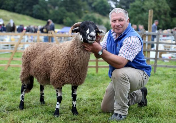 The Advertiser Series: SHOW TIME: Reeth Show.  Winners in the various sheep categories: David Wilson of Beckwithshaw nr Harrogate with Dalesbred champion.  Picture: CHRIS BOOTH (9641863)